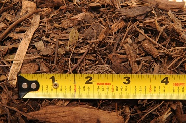 ForestMulch