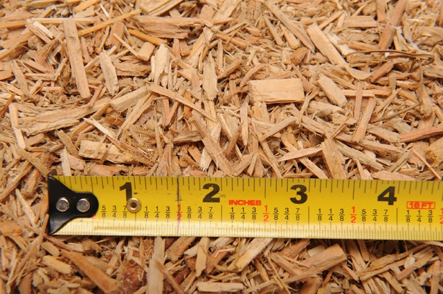 PlaygroundWoodChips